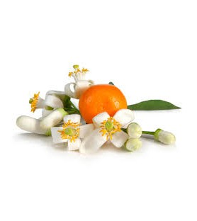Fragrance fleur d'oranger